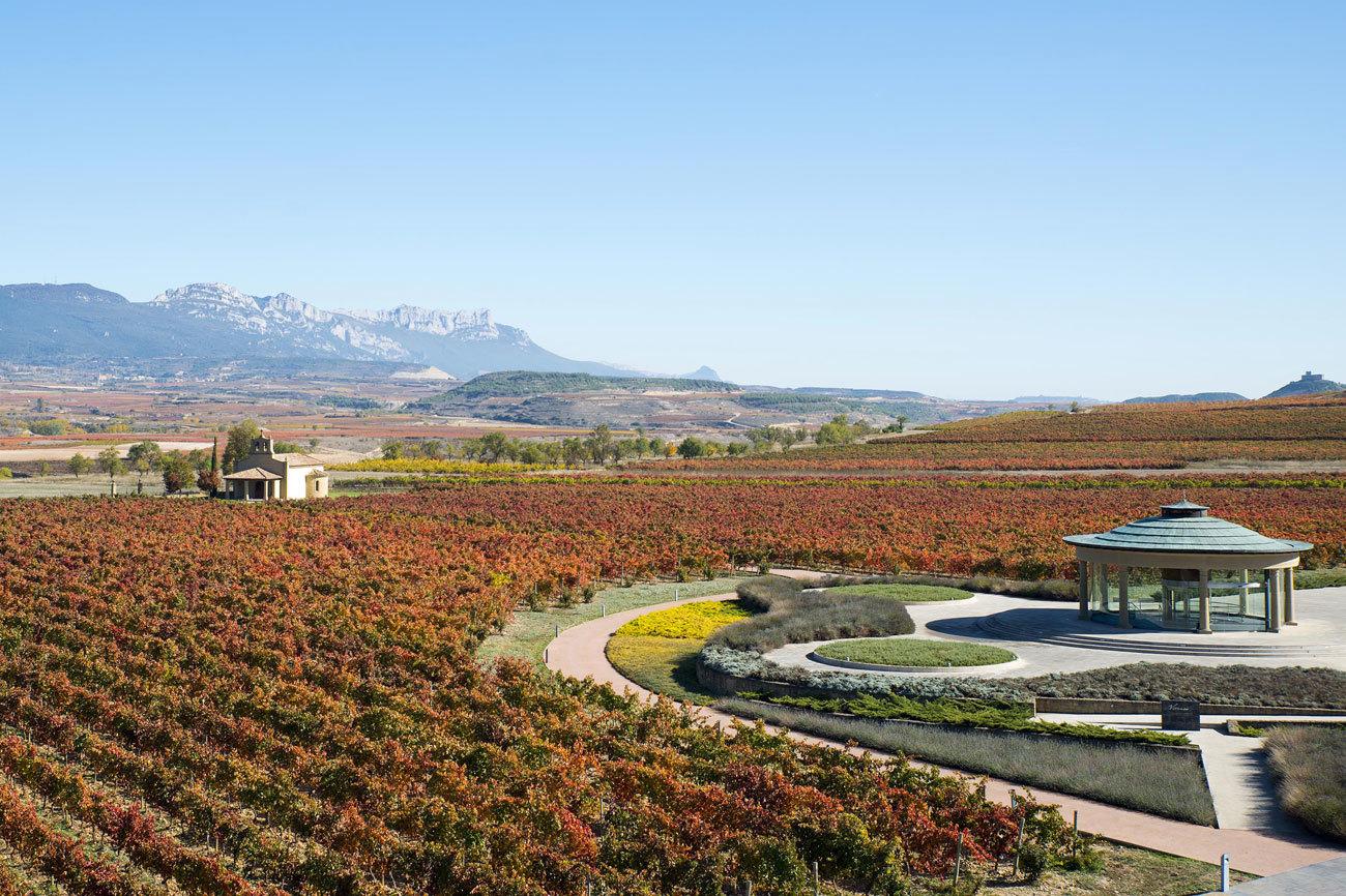 Además de contar con un Museo del Vino reconocido internacionalmente...