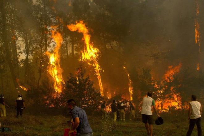 Ciudadanos de a pie combatiendo las llamas