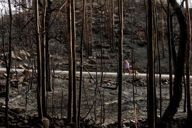El fin de semana del 14 y 15 de octubre ardieron 35.500 hectáreas de superficie en Galicia.