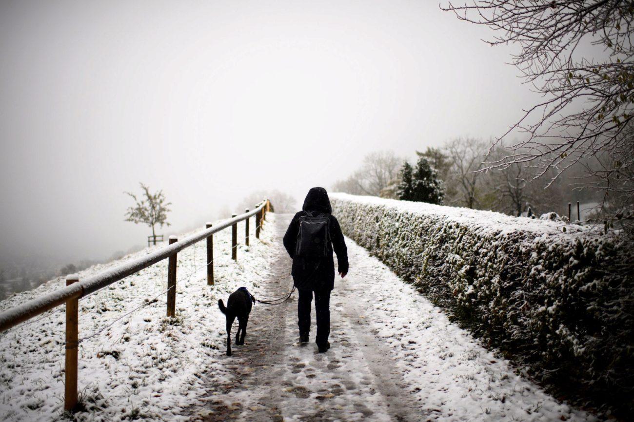 Un hombre camina junto a su perro cerca de la zona de Tres Estanques...