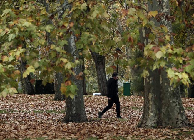 Una persona pasea por un parque en Pamplona la pasada semana.