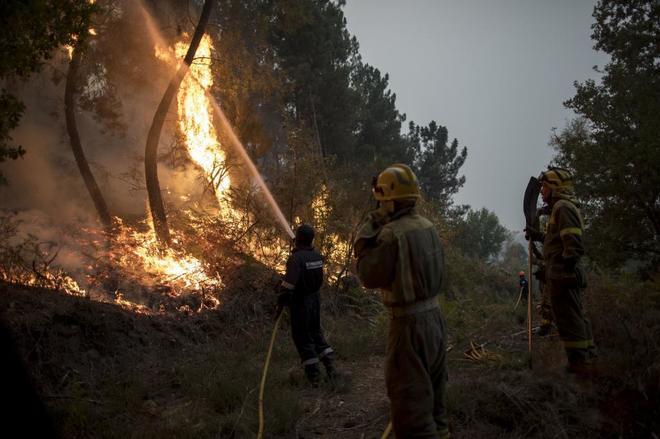 Unos brigadistas intentan sofocar el fuego en Paderne de Allariz...