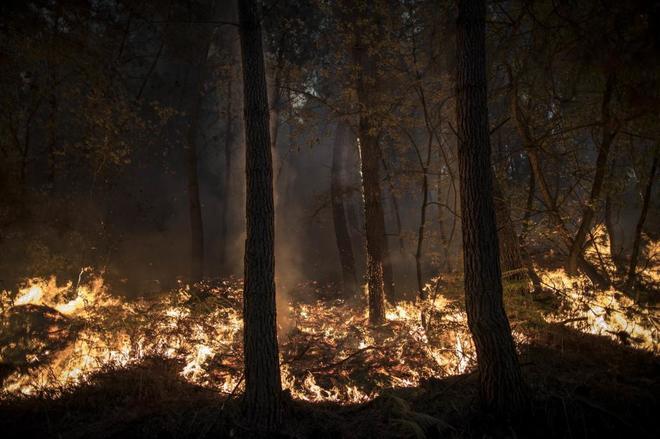 Uno de los incendios forestales que ha arrasado Galicia este año.