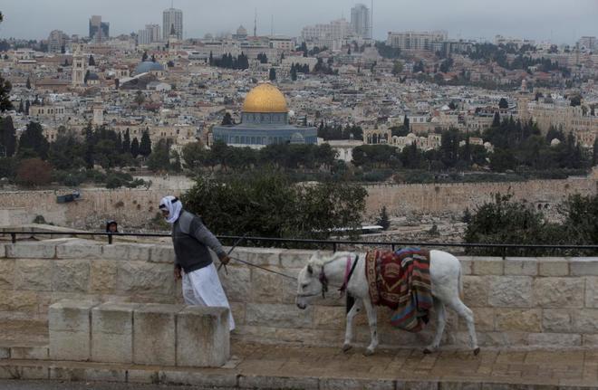 Un palestino tira de su burro mientras camina por el Monte del los Olivos, en Jerusalén Este.