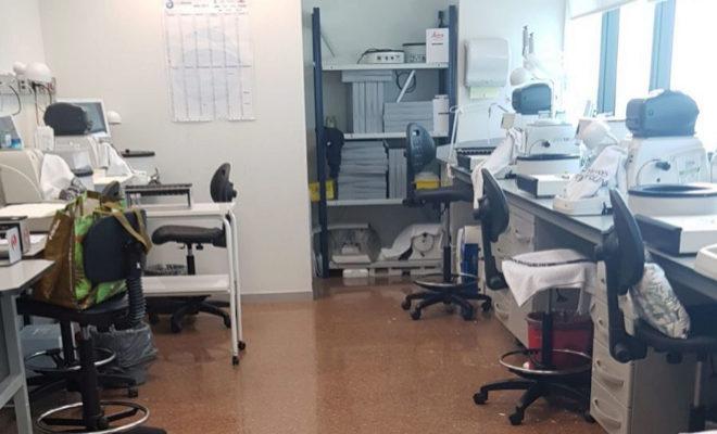 La Fe realiza obras en Anatomía Patológica contra los gases tóxicos ...