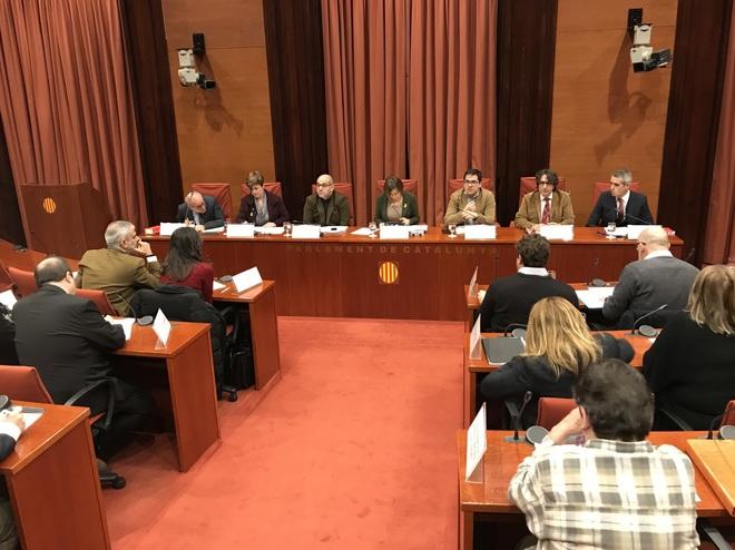 El Parlament recurrirá el 155 ante el TC gracias a los votos de los comunes