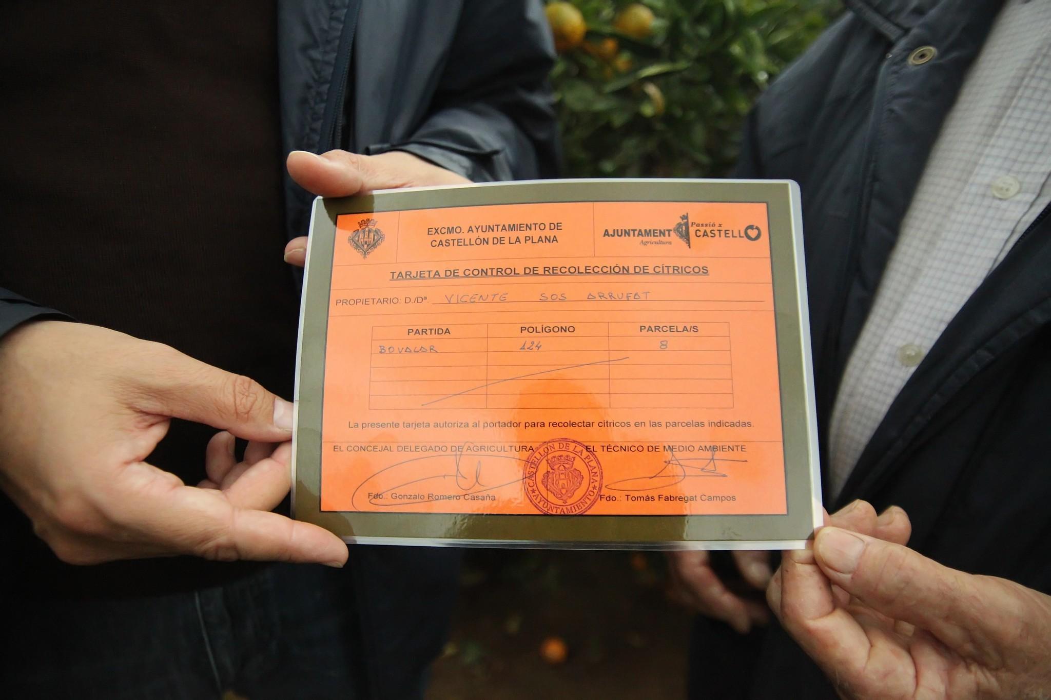 Tarjeta de recolección de cítricos expedida por el Ayuntamiento de Castellón.