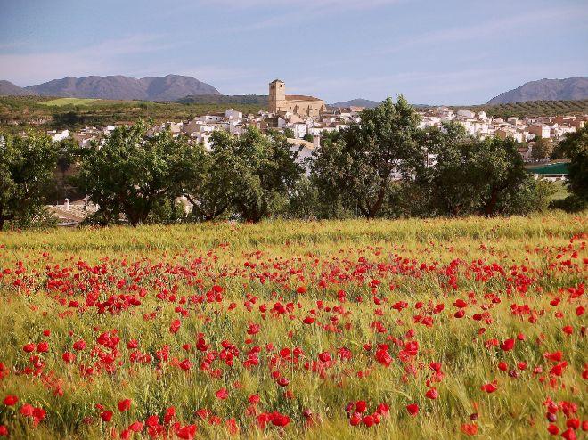 Panorámica De Alhama De Granada. Antonio García. ComentariosComentar