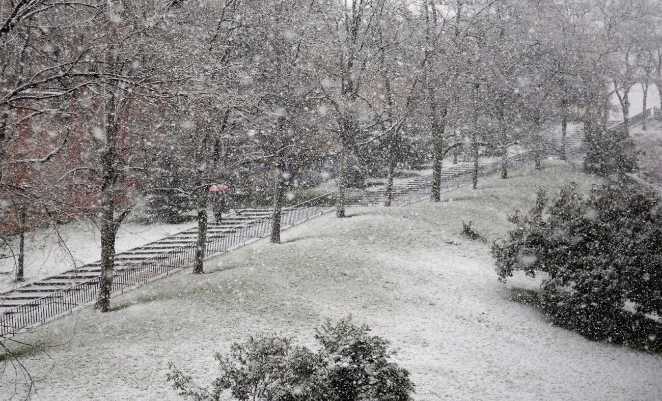 El Parque de La Cornisa, esta mañana.