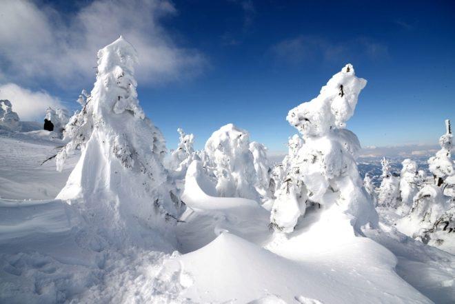 Imagen del Zao Snow Resort de Japón.