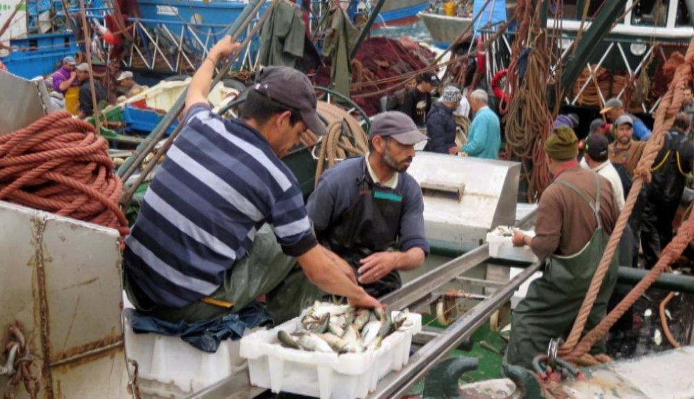 """La Justicia Europea: """"El acuerdo de pesca con Marruecos es válido"""""""