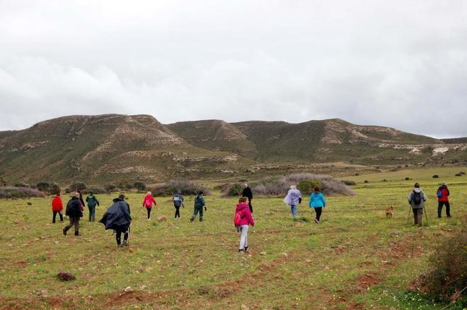 Unas 500 personas integran el dispositivo de búsqueda de Gabriel, en Níjar (Almería).