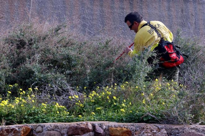 Un agente del INFOCA peina la zona contigua al lugar donde desapareció Gabriel.