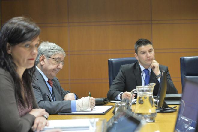 Luis María Elustondo durante su intervención en la comisión del Parlamento.