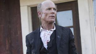 Imagen de la segunda temporada de 'Westworld'.