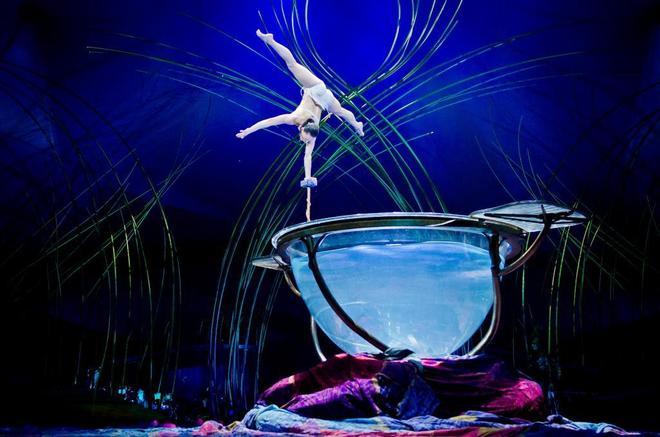 Muere un acróbata del Cirque du Soleil en pleno espectáculo en Florida