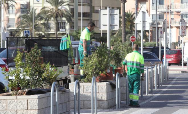 Trabajadores realizan labores de jardinería en una calle.