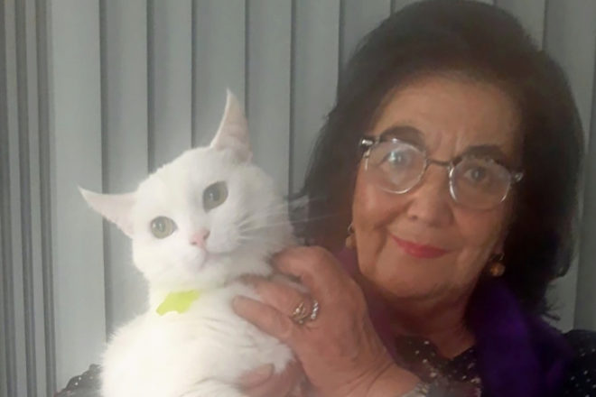 ¿Puede un gato ser infectado por un humano?