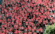 Una marea rosa formada por miles de corredoras recorren el circuito de 7,4 kilómetros de la decimocuarta edición de la Carrera de la Mujer, en la que las 16.000 participantes lucen en su camiseta el número 016 contra la violencia machista.
