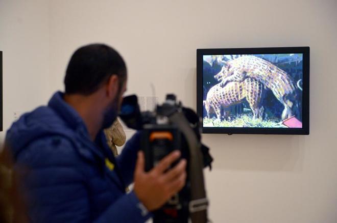El vídeo de los cerdos de Xu Bing', en Bilbao.
