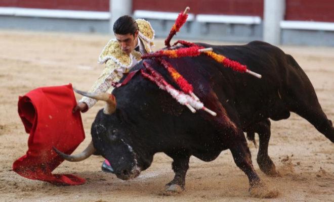 Poderoso muletazo de Alejandro Talavante, genuflexo con el encastado tercer toro de Cuvillo