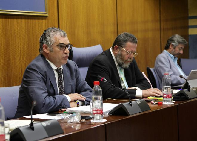 El consejero de Empleo, Javier Carnero, este jueves en la comisión parlamentaria.