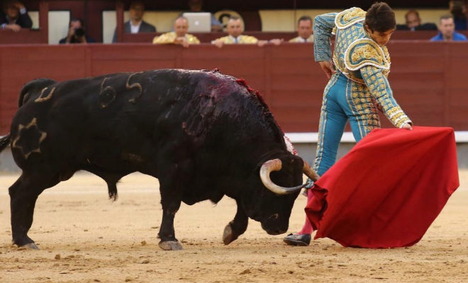 Circular invertido de Castella al astifinísimo quinto toro de Jandilla