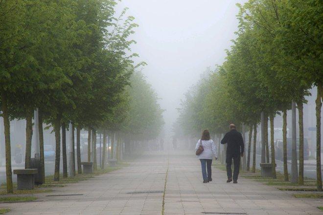 Una calle de Vitoria cubierta por una espesa niebla esta mañana.