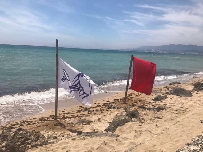 Playa de Palma cerrada con sendas banderas por la alerta de carabela portuguesa.