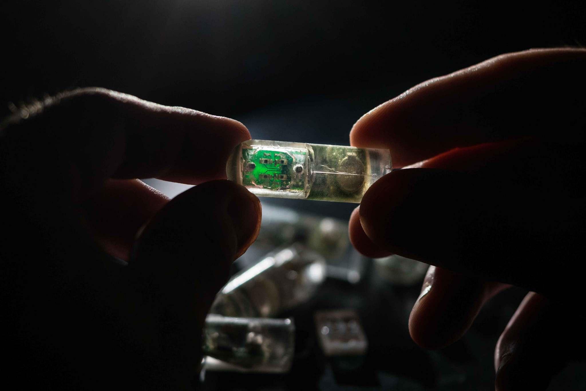 Esta cápsula combina una mezcla de células vivas y componentes