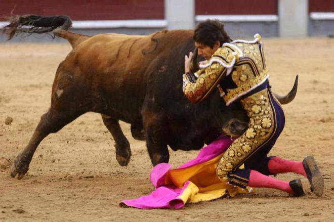 Momento de la terrible cogida de Sebastián Castella con el quinto de la tarde al que desorejó