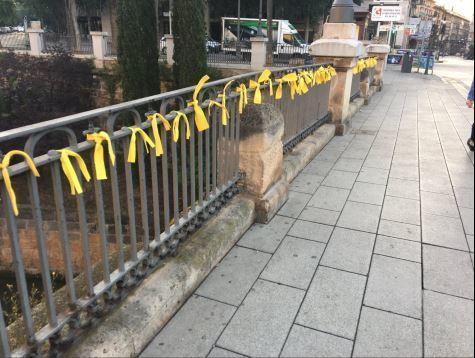 Los lazos amarillos llegan a PalmaValtonyc reaparece en vídeo en