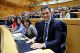 El presidente del Gobierno, Pedro Sánchez, esta tarde en el Senado.