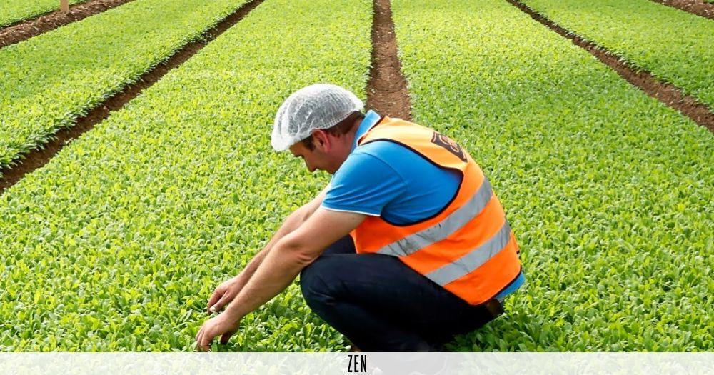 Hace 10 años, a Javier Les, director técnico agrícola de