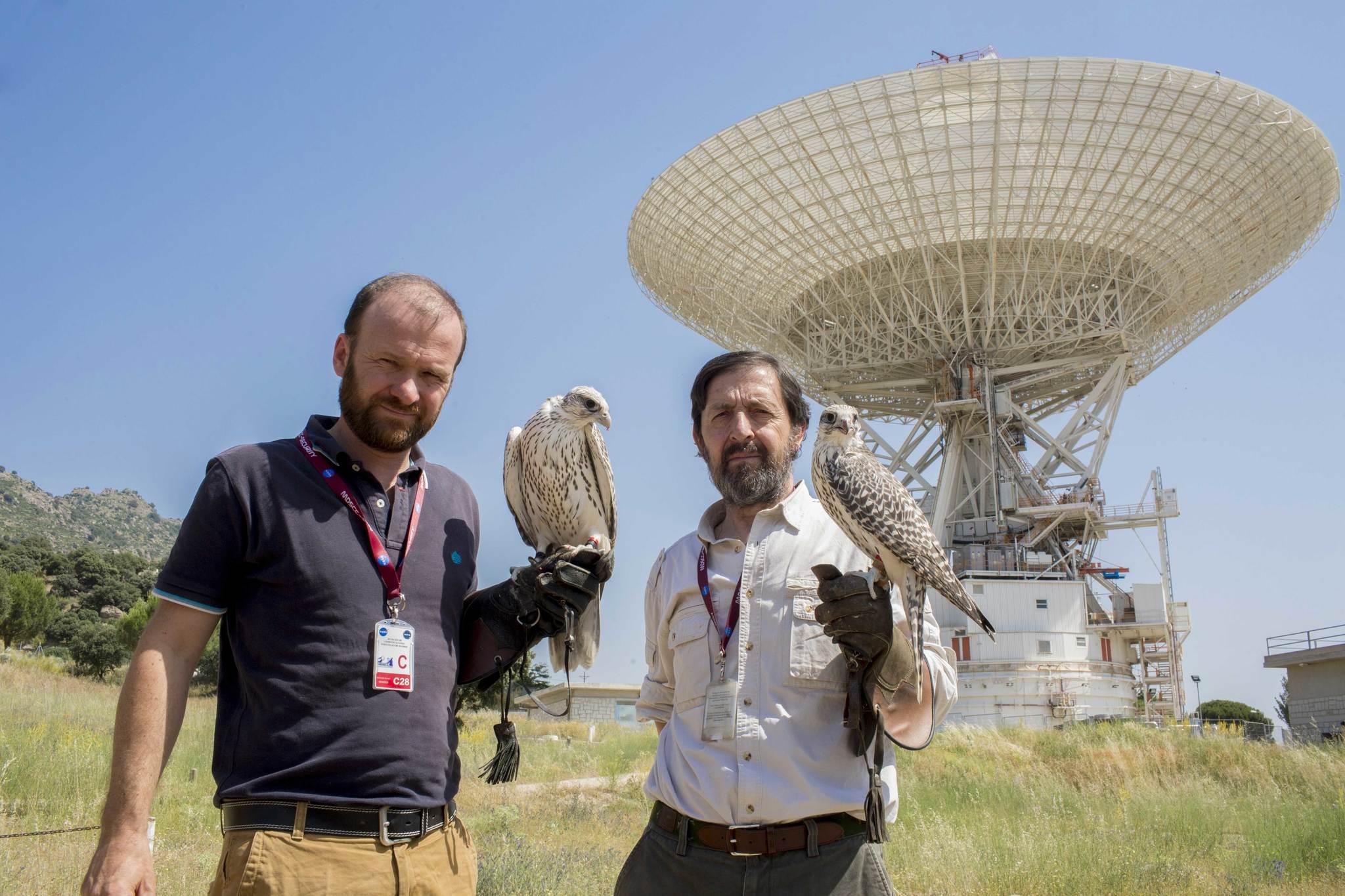 Los excrementos de aves pueden obstruir las comunicaciones con las