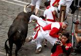 Un toro de la ganadería extremeña de Jandilla cornea a un mozo en el...