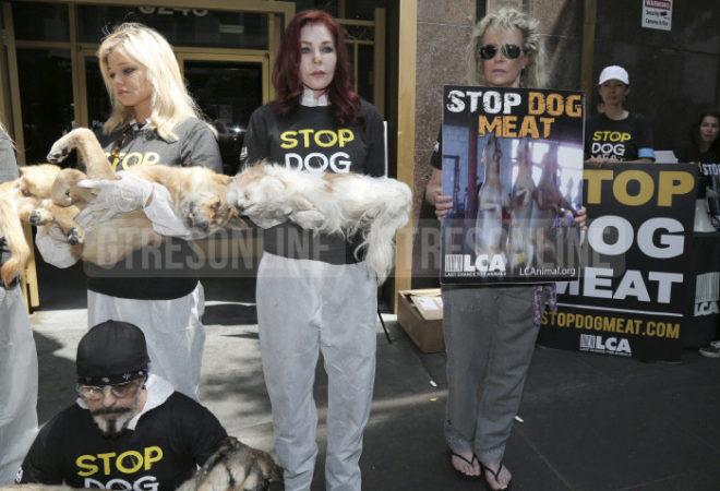 A la izquierda, Priscilla Presley sosteniendo un perro muerto; a la derecha, Kim sujetando el cartel de la protesta.