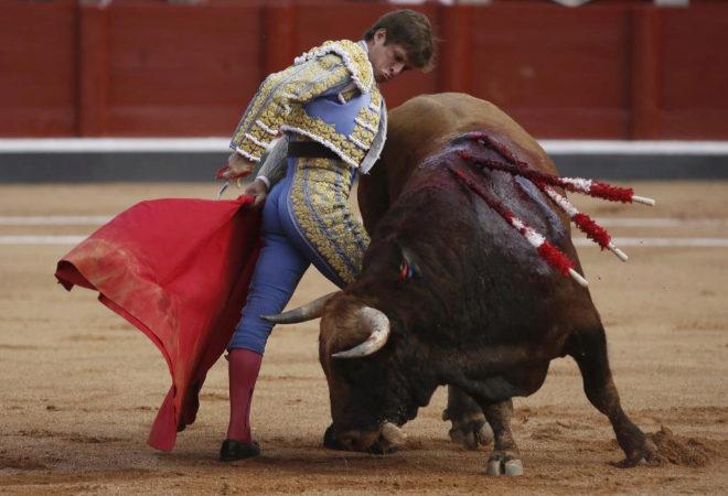 El Juli en actuación reciente en la plaza de toros de Salamanca