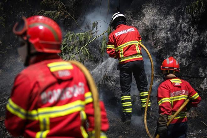 Un año después de los peores incendios de la historia