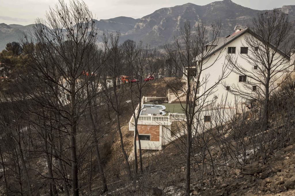 Zona afectada por el incendio en Llutxent