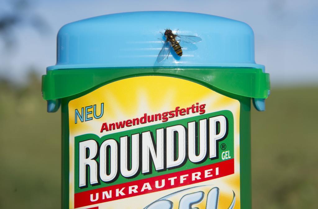 Un jurado en California ha condenado a Monsanto a indemnizar