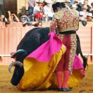 La cadencia de media verónica de Morante de la Puebla, en la Maestranza en abril de 2013
