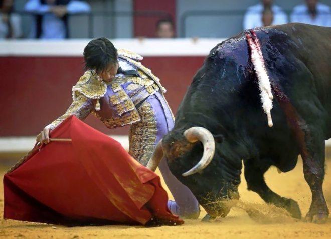 Roca Rey, el nuevo fenómeno del toreo, hará el paseíllo en Bilbao los próximos 21 y 24