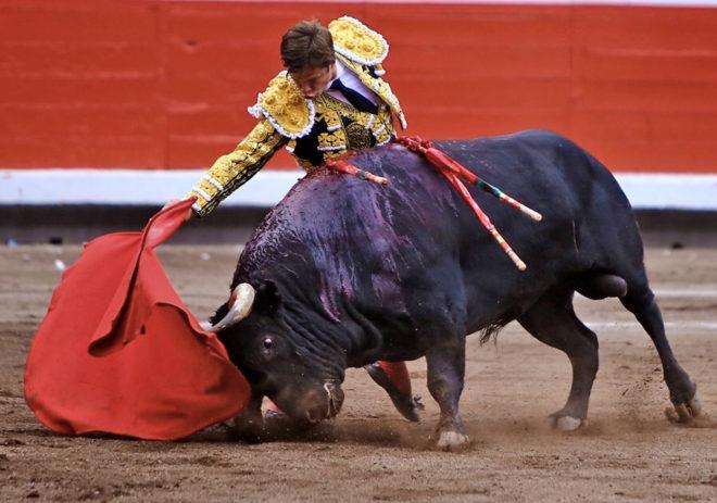 Largo derechazo de El Juli al quinto toro de Garcigrande, en la plaza de Vista Alegre