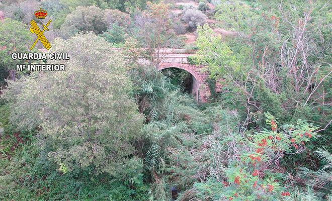 Puente desde donde se arrojó al cachorro.