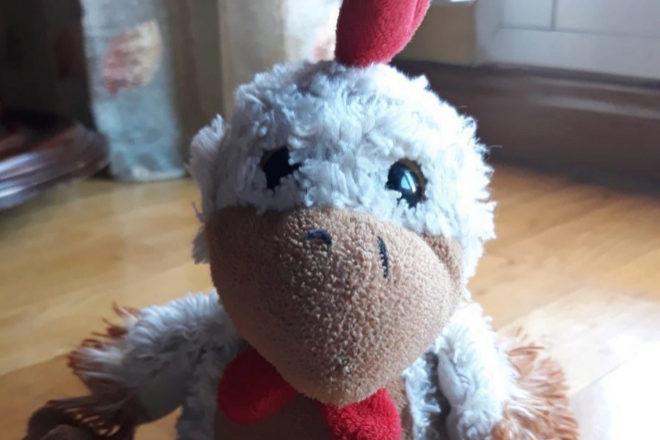El pollo de peluche perdido Kiki.