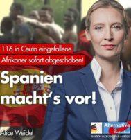 Cartel del partido ultraderechista Alternative für Deutschland celebrando las deportaciones.