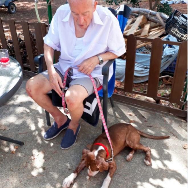 Francisco, enfermo se Alzheimer, ya junto a su perrita salvadora Estrella.