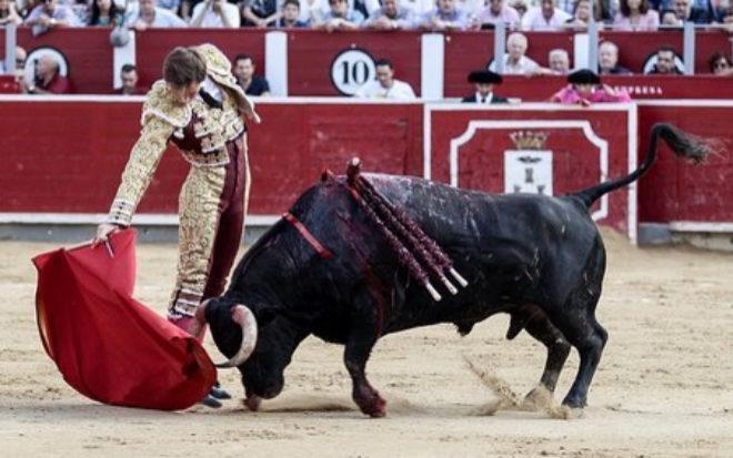 Largo derechazo de Sergio Felipe al primer novillo de El Cortijillo, al que cortó una oreja