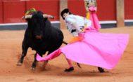 Juan del Álamo cortó una oreja a cada toro de su lote y abrió la puerta grande
